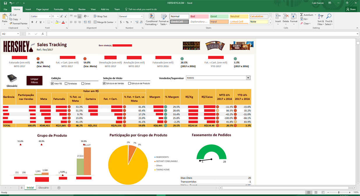 Figure 1 – Example Excel dashboard (sensitive data covered by red boxes)