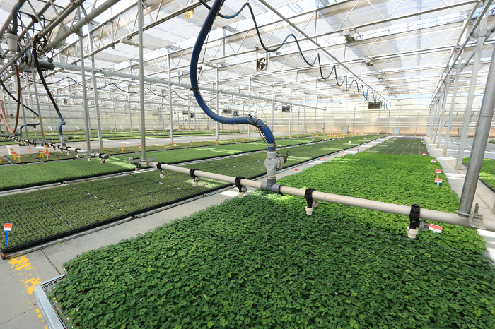 IoT pH flow controls and automation with Costa Farms | Microsoft